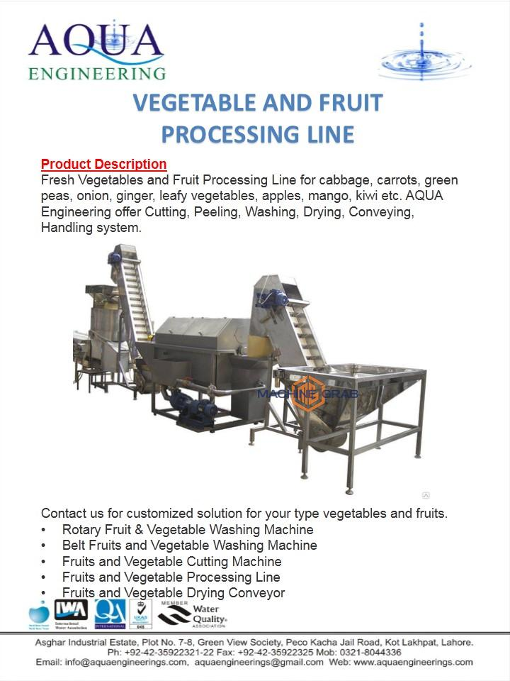 Vegetable and Fruit Processing Line